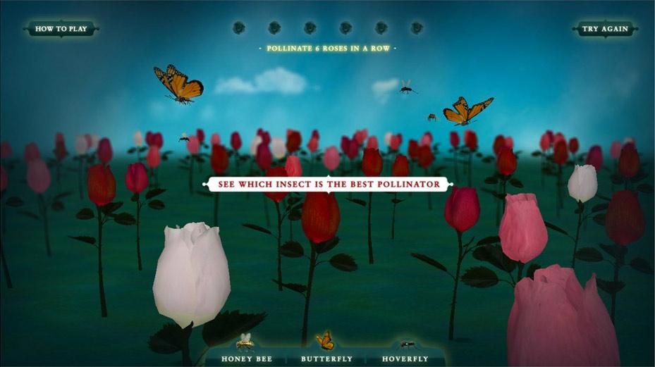 Pollinator-Instructions