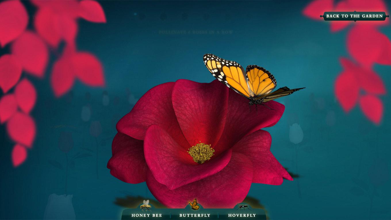 Pollinator-Rose