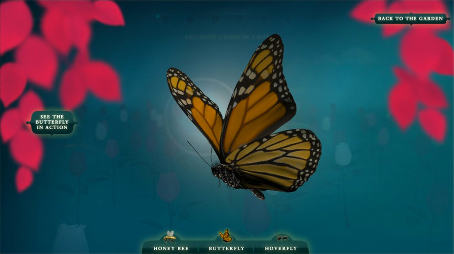 Pollinator-butterfly