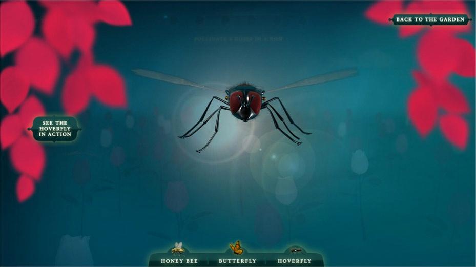 Pollinator-fly